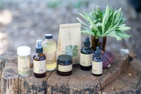 Sweet Gum Springs Apothecary