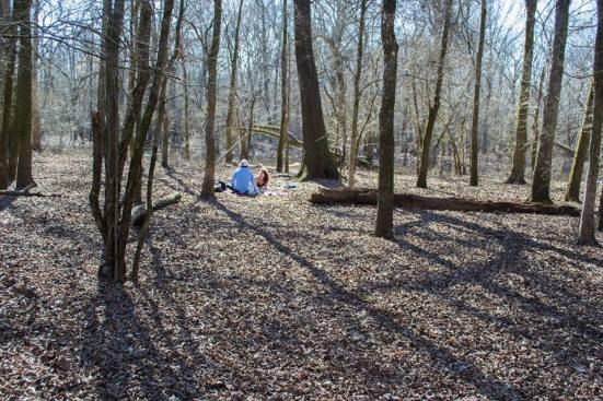 hart and lindsay picnic