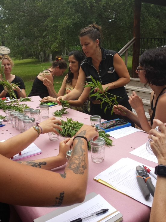 herb workshop 2016-34
