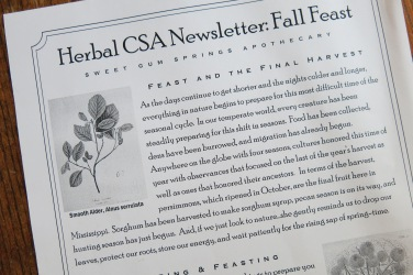 CSA Newsletter