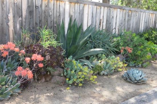 ojai landscaping