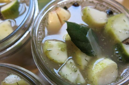 LF pickles 4