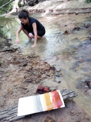 A special creek with a lot of petrified wood and ochres...