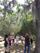 Herb walk at Foraged Farmacy in Clinton, MS...