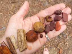 Petrified wood, Indian paint pots, and ochres...